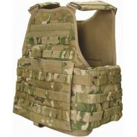 Plate Carrier (vest), Basic